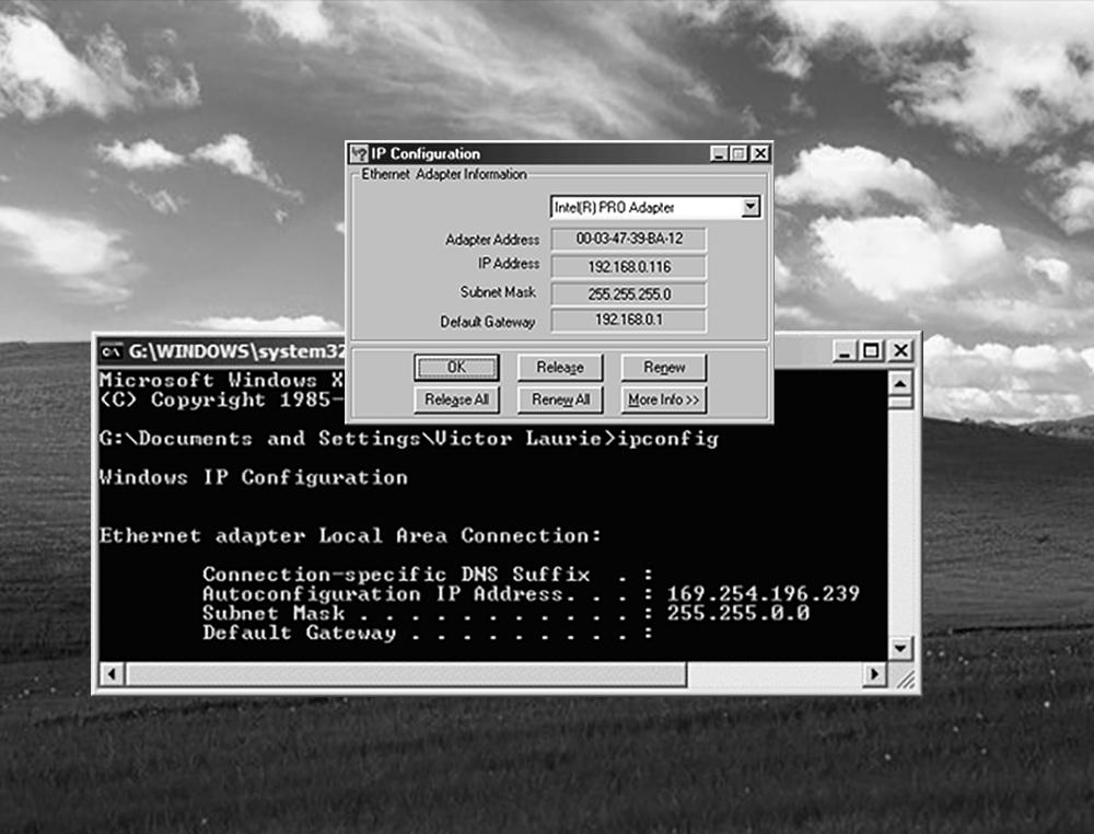 operating system rapidscreen
